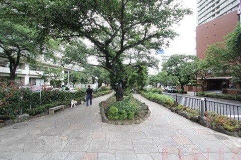 s-20160622_播磨坂 (3)