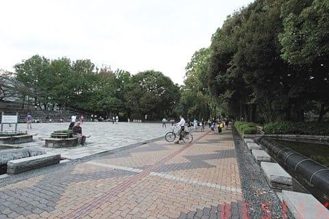教育の森公園広場