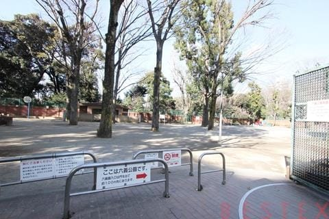 隣接の無料公園