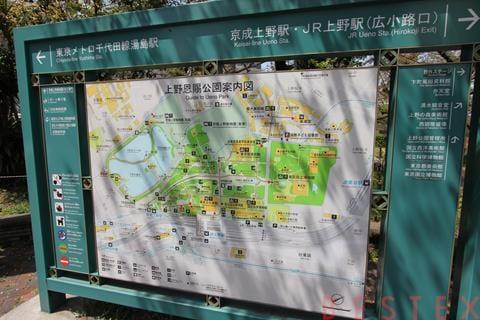 不忍池MAP