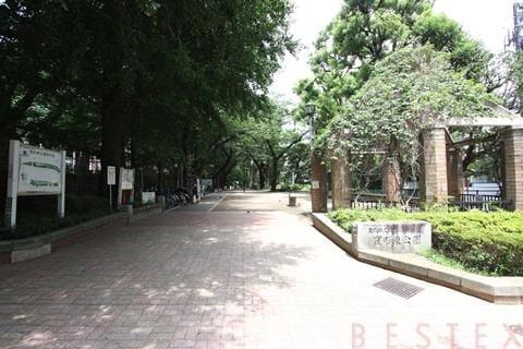 エルスタンザ小石川 706