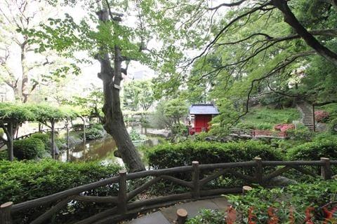 区立須藤公園