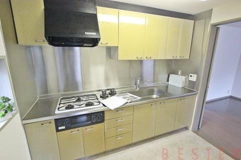 広々ガスシステムキッチン