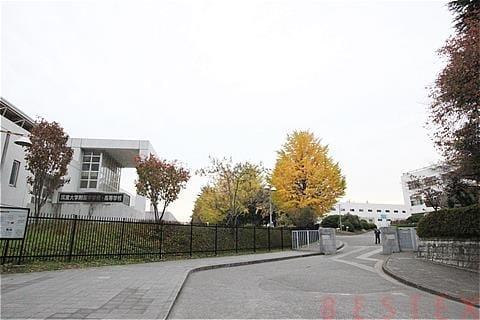 筑波大学付属校