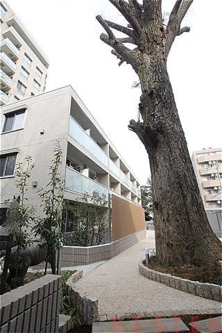 ガーデンビレッジ小石川 206