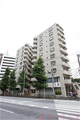 メゾンブロンシュ本駒込 10階