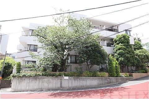西片サニーハイツ 1階