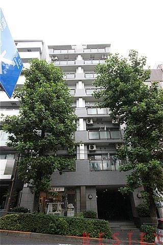 東急ドエル・アルス白山 9階