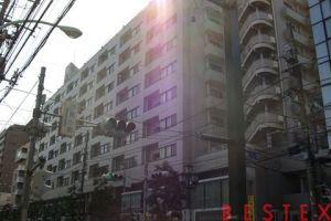 ルネ千駄木プラザ 10階