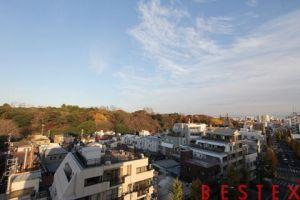 S-RESIDENCE文京小石川 802