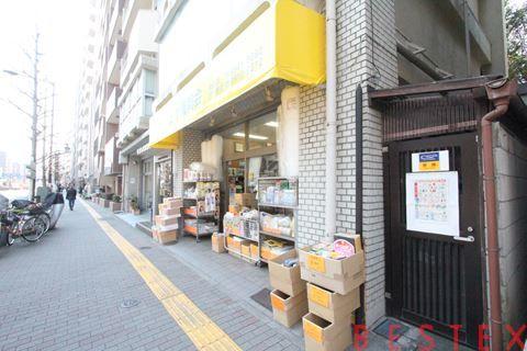 六義園サマリヤマンション 11階