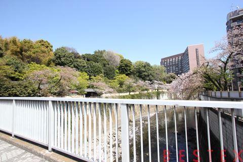 コンシェリア早稲田Green Forest 204